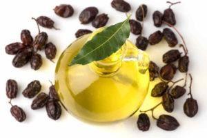 Neem en botella de vidrio con un trozo de hoja en él y las semillas de neem alrededor en fondo blanco