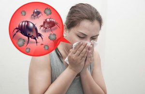 Mujer es alérgico a ácaros de polvo