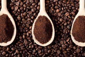 Granos de café y terrenos