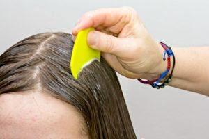 Cepillado del cabello para tratar los piojos de la cabeza