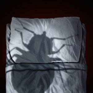 Grande cama bug sombra en almohada