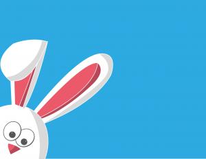 Conejo — Hábitos Alimenticios de Conejos Salvajes y Domésticos que te Sorprenderán