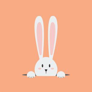 Conejo blanco en el agujero sobre fondo naranja.