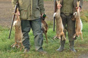 Dos personas tienen conejos y pistolas en las manos en la naturaleza.