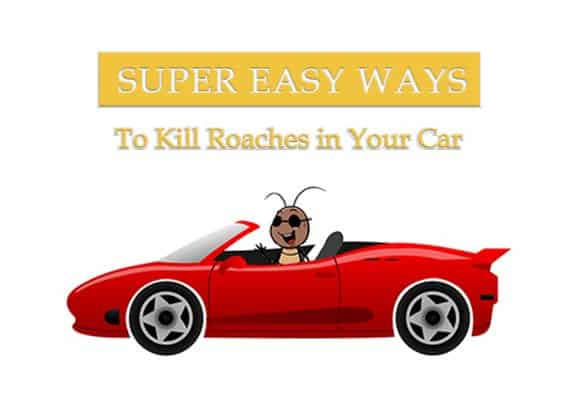 4 Maneras Sencillas de Matar Cucarachas en tu Coche