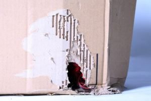 Daños en la caja causados por ratas