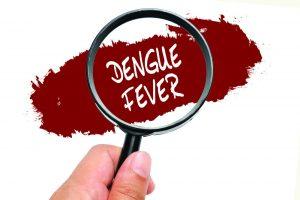 Fiebre del dengue, concepto de salud.