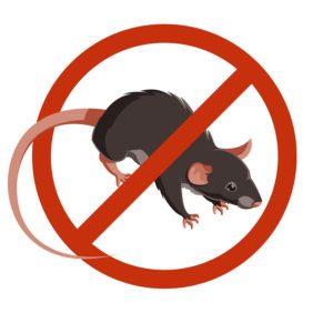 Señales vectoriales de advertencia de ratas o ratones
