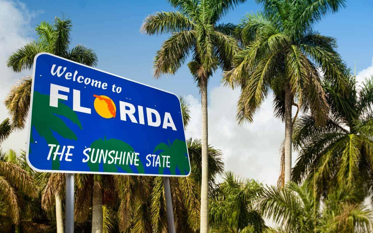 Insectos en Florida