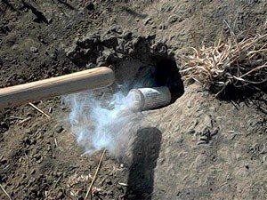 Fumigar el agujero de la marmota