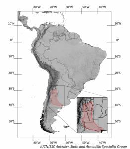 Hada rosa armadillo Hábitat y rango geográfico