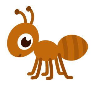 Hormiga de dibujos animados con grandes ojos en fondo blanco