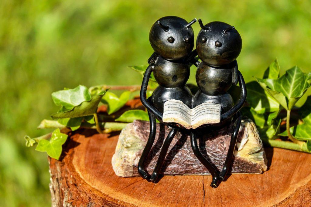 Cómo Deshacerse de las Hormigas en su Cuarto de Baño — Una ...