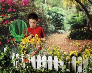Beneficios Milagrosos de los Jardines de Mariposas para el Medio Ambiente