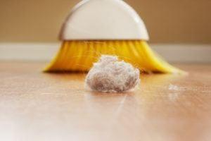 Limpieza de ácaros de polvo