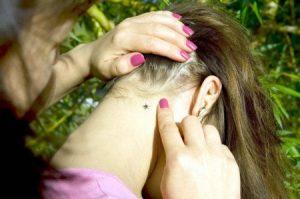 Una garrapata en el cuello de la niña