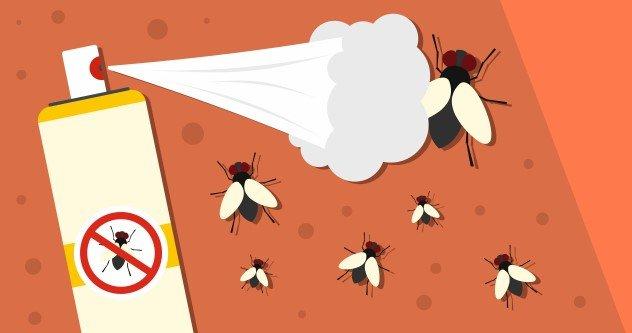 ¿Cuál es el Mejor Repelente de Mosquitos?