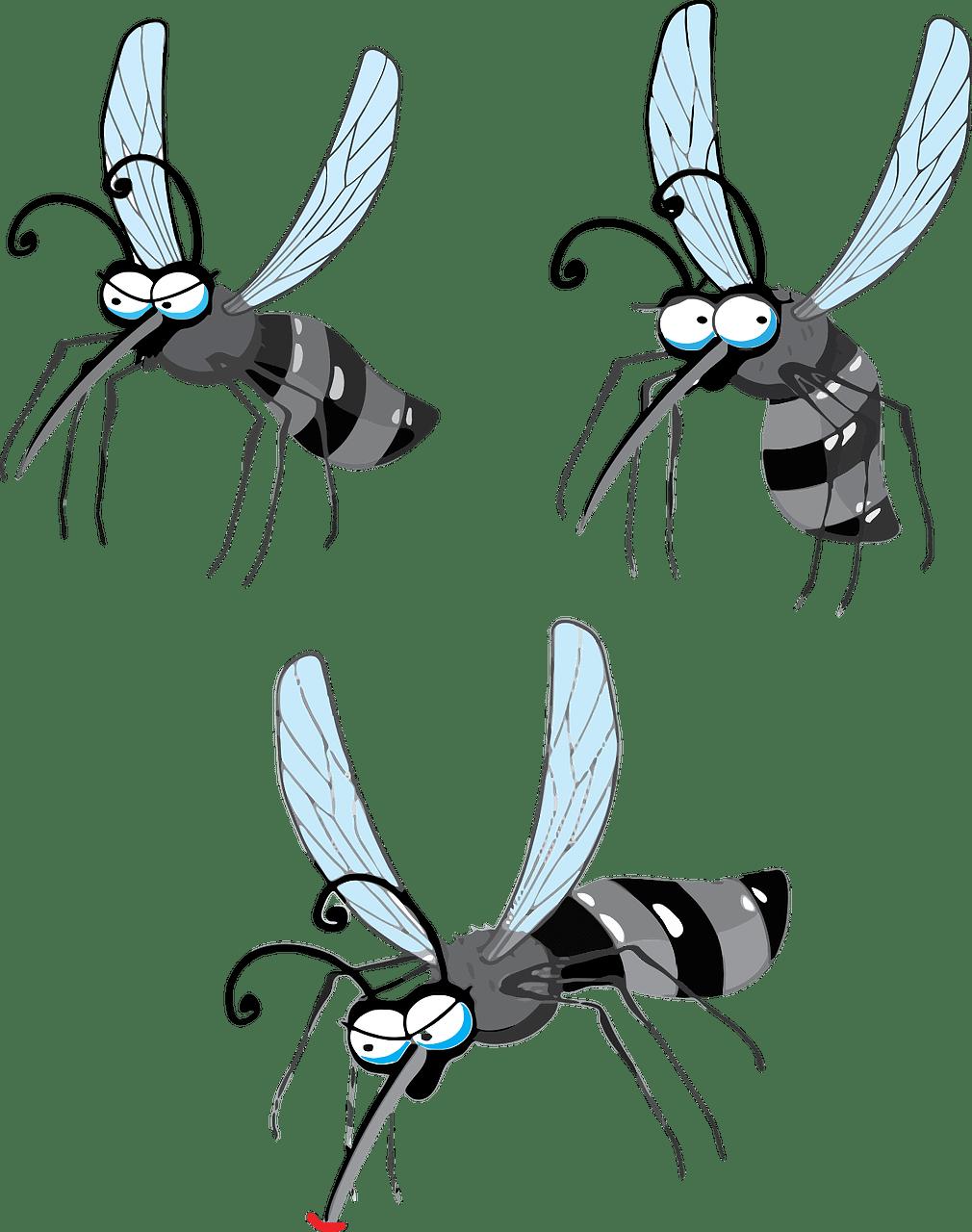 5 Mejores Repelentes de Mosquitos (Clasificados y Revisados)