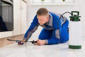 Hombre trabajador arrodillado en el suelo y fumigación pesticida en el armario de madera