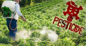 Un hombre está usando pesticidas para matar saltamontes