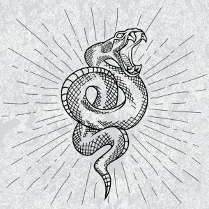 Símbolo de serpiente de cascabel en fondo blanco