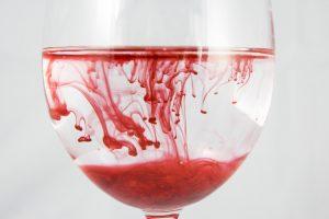 Insectos Chupadores de Sangre — 11 Tipos de «Chupadores de Sangre» y Cómo Identificarlos?