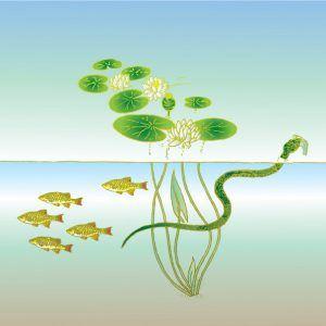 Imagen de dibujos animados de serpiente de agua verde bajo el río