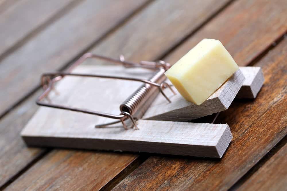 Una trampa de chasquido de ratón con un queso en ella