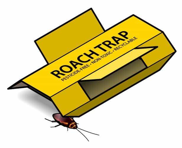 Una trampa de cucaracha amarilla en el fondo blanco