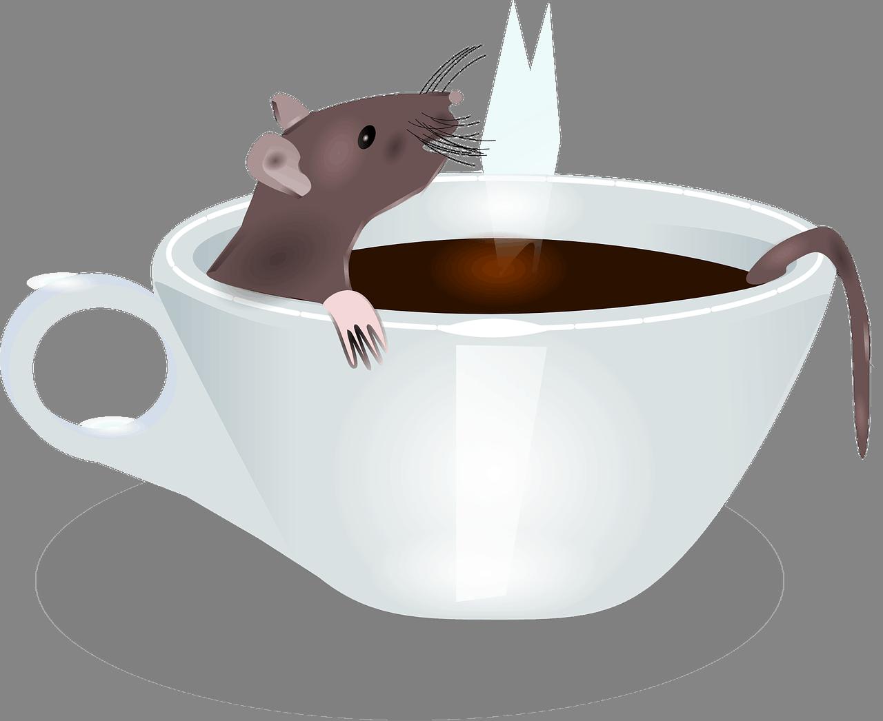 Cómo Deshacerse de los Ratones en el Apartamento: Todo lo que Necesita Saber