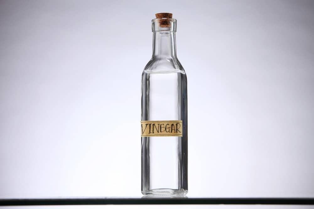 Una botella de vinagre vacía