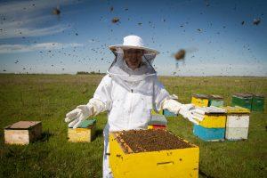 Foto horizontal de un apicultor en traje de protección blanco que se encuentra detrás de una colmena con los brazos abiertos.