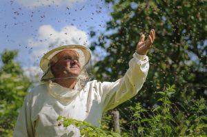 Un apicultor se encuentra en un lugar natural, y las abejas pululan a su alrededor.
