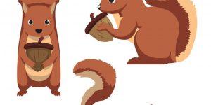 Ilustración del vector de tres ardillas lindas de la historieta.