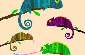 Camaleón: Todo lo Que Necesitas Saber