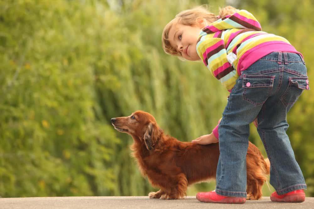 Una chica encantadora con su perro fuera