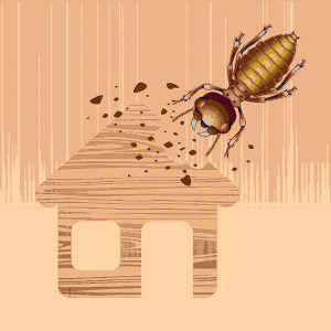 Imagen de dibujos animados de una termita grande está dañando la casa