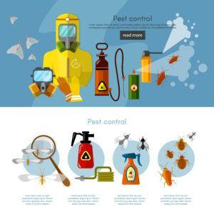 Servicios de control de plagas insectos exterminador detectar exterminadores insectos banner infografías ilustración vectorial.