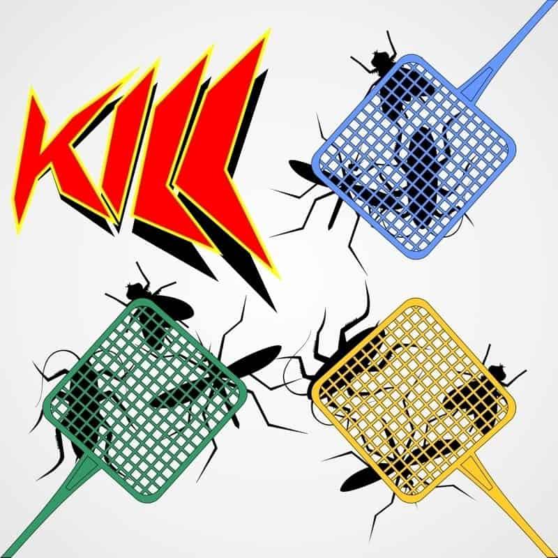 Todo tipo de insectos herramientas de matar
