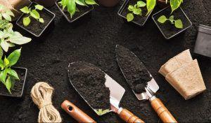 Listo para cultivar el suelo