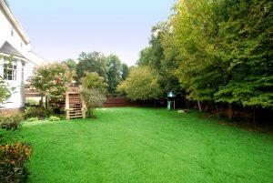 Un patio trasero hermoso y limpio