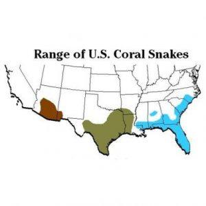 Rangos de serpientes de coral en el mapa