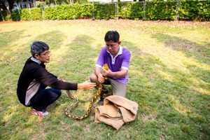 Dos personas están atrapando serpiente al aire libre