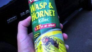 spray de avispa en mano humana.