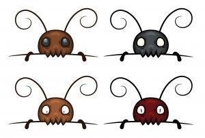 5 Tipos de Termitas – Diferentes Tipos de Especies de Termitas