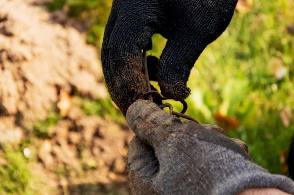 Hombre vistiendo guantes es establecimiento un trampa para topo
