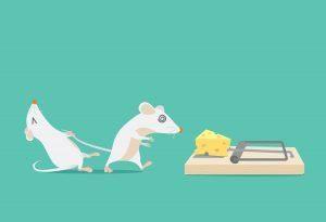 Dibujos animados de imagen del ratón intenta detener amigo a atrapado porque el queso