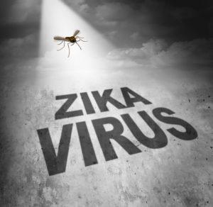Símbolo de riesgo del virus Zika como la sombra de una enfermedad que transporta un mosquito formando un texto que representa el peligro de transmitir la infección a través de mordeduras de bichos que provocan la fiebre del zika.